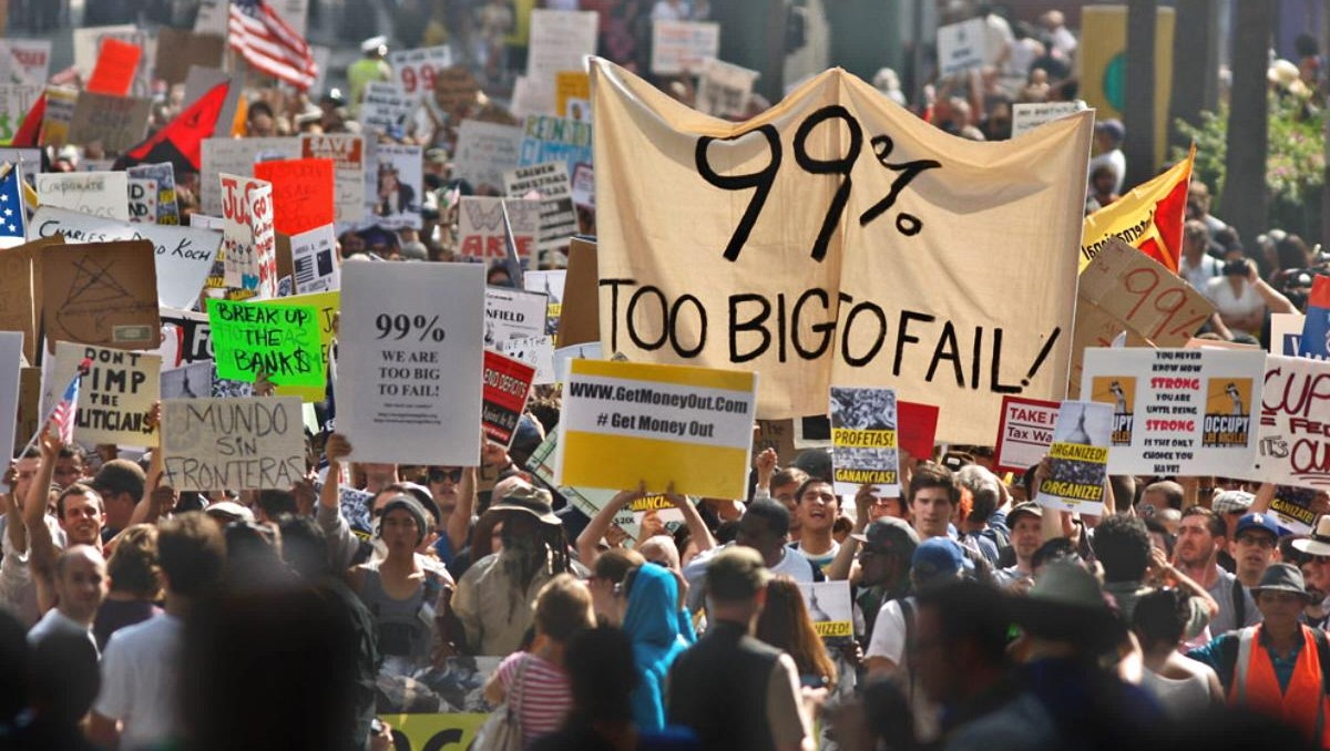 Protest for Socialism - Too Big to Fail - We are the 99%